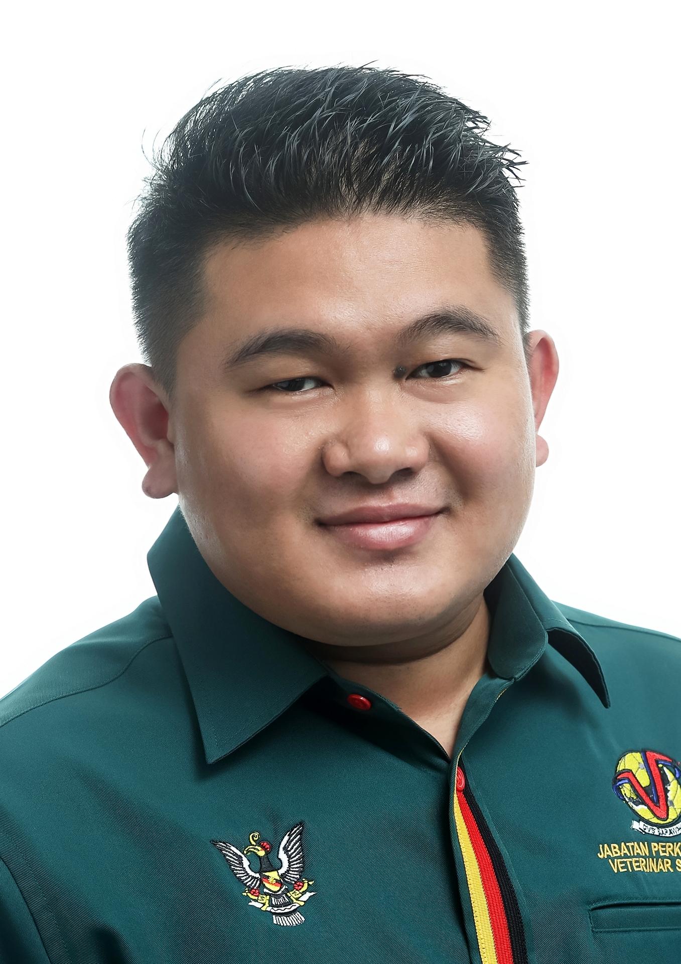 Dino Sumit